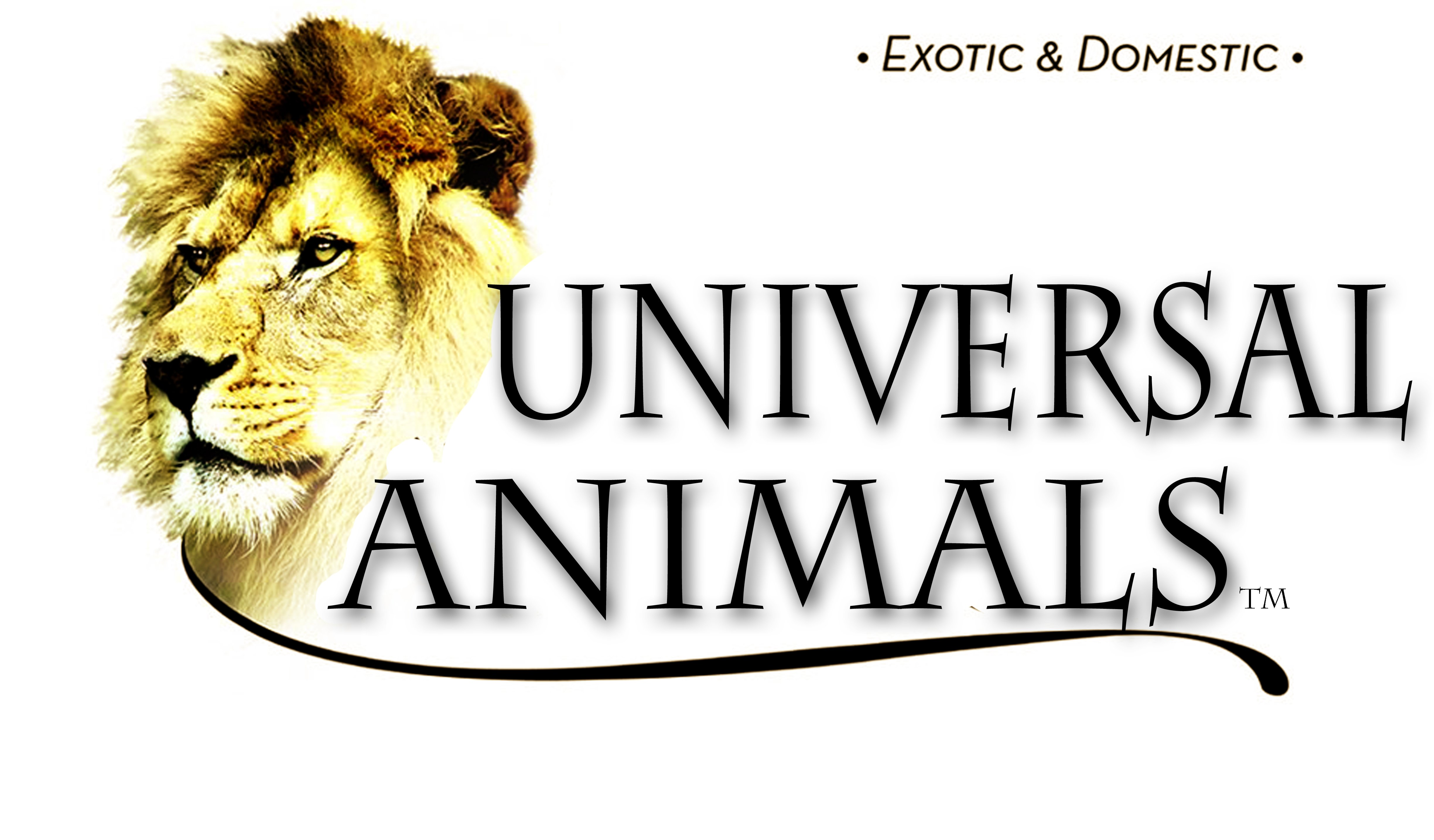 Universal Animals